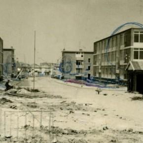 De naoorlogse woonwijk: groen van binnen